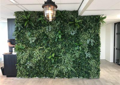 Plantenwand-op-kantoor